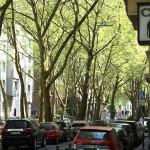 Das Agnesviertel – Kaffeeklatsch, Kunst und Kokolores