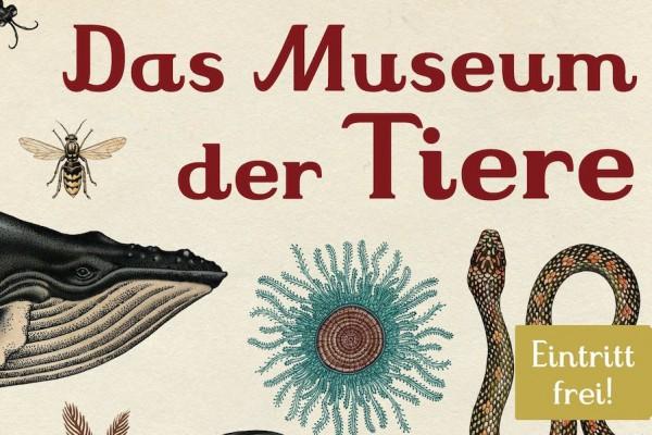 Das Museum der Tiere von Jenny Broom