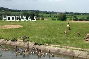 Kleine Auszeit: Wochenende im Landal Ferienpark Hoog Vaals