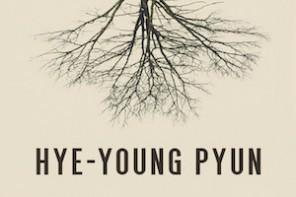 Buchtipp: Hye-Young Pyun – Der Riss