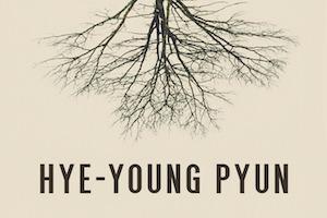 Der Riss von Hye-young Pyun