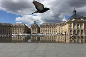 Bonjour Bordeaux – Städtereise in die Weinhauptstadt